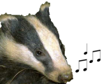 the Lyrics Badger
